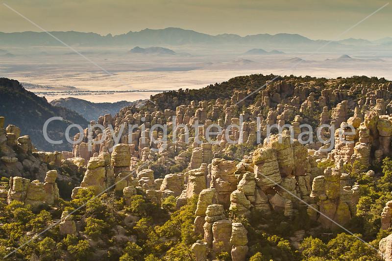 Chiricahua Nat'l Mon in Arizona -  D7-C1 -0004 - 72 ppi
