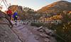 Grottoes Trail, Chiricahua Nat'l Mon in Arizona - D5-C2 -0079 - 72 ppi