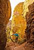Grottoes Trail, Chiricahua Nat'l Mon in Arizona -  D7-C2#2  -0027 - 72 ppi