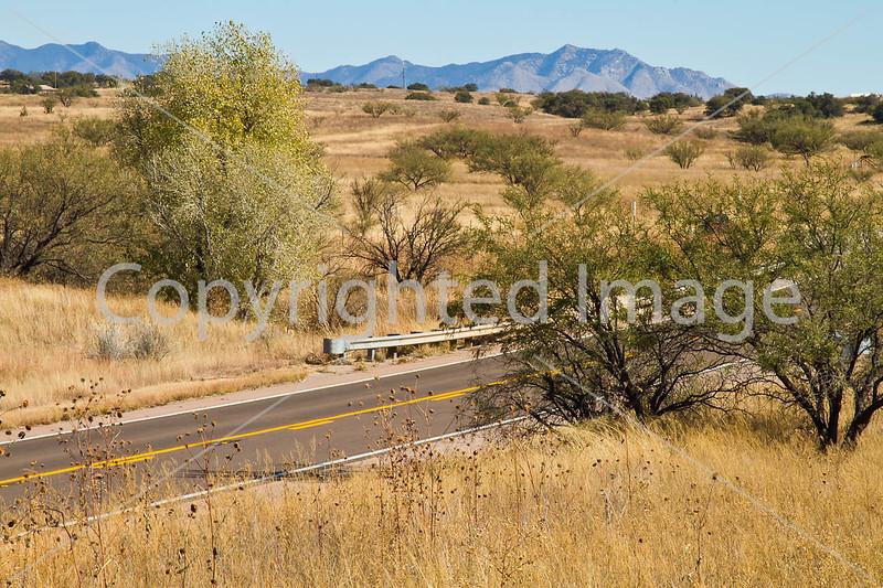 Along Arizona Hwy 82 between Sonoita & Patagonia  D4-C3-0043 - 72 ppi