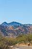 Along Arizona Hwy 82 between Sonoita & Patagonia   D4-C1 -0058 - 72 ppi