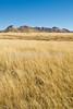 Along Arizona Hwy 82 between Sonoita & Tombstone  D4-C3 -0061 - 72 ppi