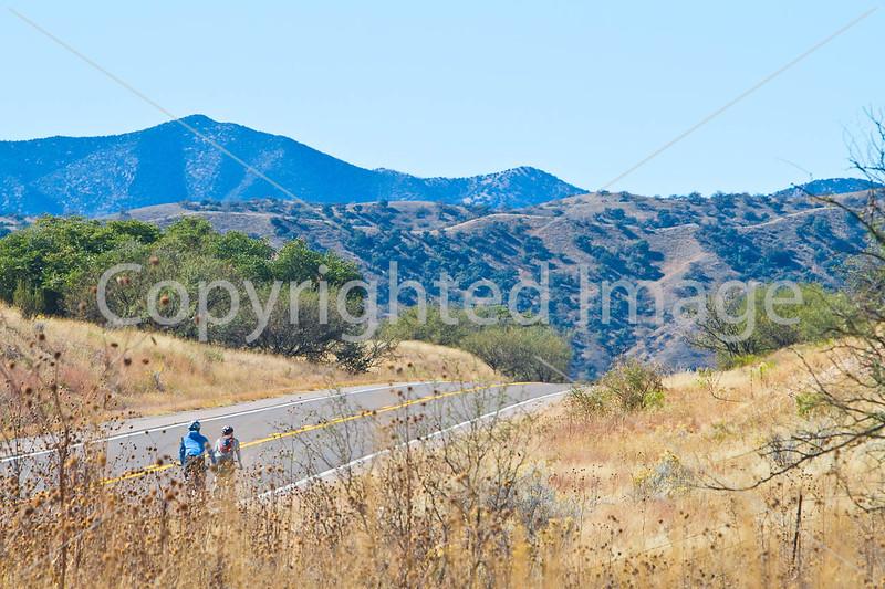 Along Arizona Hwy 82 between Sonoita & Patagonia   D4-C1 - - 72 ppi-2