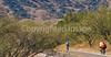 Along Arizona Hwy 82 between Sonoita & Patagonia   D4-C1 -0058 - 72 ppi-2