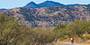 Along Arizona Hwy 82 between Sonoita & Patagonia   D4-C1 -0059 - 72 ppi-2