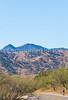 Along Arizona Hwy 82 between Sonoita & Patagonia   D4-C1 -0051 - 72 ppi