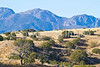 Views along Arizona Hwy 83 north of Sonoita  D4-C1-0007 - 72 ppi
