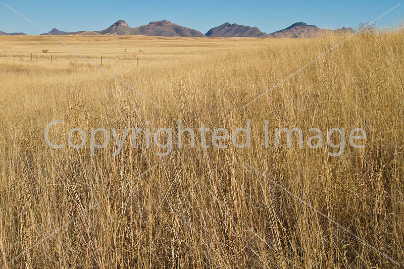 Along Arizona Hwy 82 between Sonoita & Tombstone  D4-C3 -0054 - 72 ppi