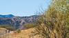 Along Arizona Hwy 82 between Sonoita & Patagonia   D4-C1 -0082 - 72 ppi