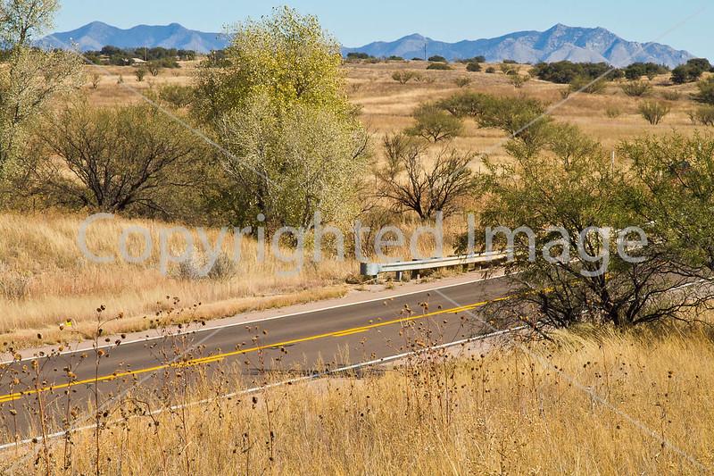 Along Arizona Hwy 82 between Sonoita & Patagonia  D4-C3-0042 - 72 ppi