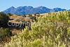 Views along Arizona Hwy 83 north of Sonoita  D4-C1-0008 - 72 ppi