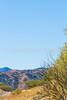 Along Arizona Hwy 82 between Sonoita & Patagonia   D4-C1 -0093 - 72 ppi