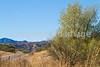 Along Arizona Hwy 82 between Sonoita & Patagonia   D4-C1 -0044 - 72 ppi