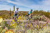 Sojourn cyclists in Saguaro NP East - D2-C2-0051 - 72 ppi