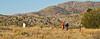 Fort Bowie Nat'l Historic Site, AZ - D6-C3 -0200 - 72 ppi-2