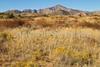 Fort Bowie Nat'l Historic Site, AZ - D6-C3#2-0086 - 72 ppi