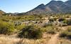 Fort Bowie Nat'l Historic Site, AZ - D6-C3 -0101 - 72 ppi