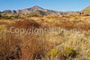 Fort Bowie Nat'l Historic Site, AZ - D6-C3#2-0087 - 72 ppi