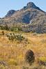 Fort Bowie Nat'l Historic Site, AZ - D6-C3 -0224 - 72 ppi