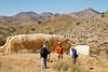 Fort Bowie Nat'l Historic Site, AZ - D6-C3 -0305 - 72 ppi