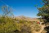 Fort Bowie Nat'l Historic Site, AZ - D6-C3 -0038 - 72 ppi