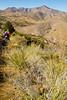 Fort Bowie Nat'l Historic Site, AZ - D6-C3 -0405 - 72 ppi