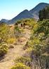 Fort Bowie Nat'l Historic Site, AZ - D6-C3 -0047 - 72 ppi