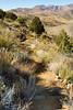 Fort Bowie Nat'l Historic Site, AZ - D6-C3 -0410 - 72 ppi