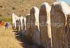 Fort Bowie Nat'l Historic Site, AZ - D6-C3 -0212 - 72 ppi
