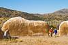 Fort Bowie Nat'l Historic Site, AZ - D6-C3 -0298 - 72 ppi