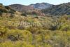 Fort Bowie Nat'l Historic Site, AZ - D6-C3 -0095 - 72 ppi