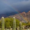 Rainbow_0787