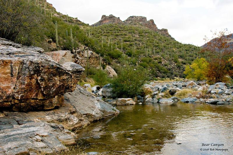 Bear Canyon_6631