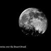RM_D7000_moonrise_over_desert_brush_4371