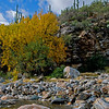 Bear_Canyon_6650