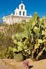 Mission San Xavier del Bac near Tucson, AZ  D3-C3 -0087 - 72 ppi-2