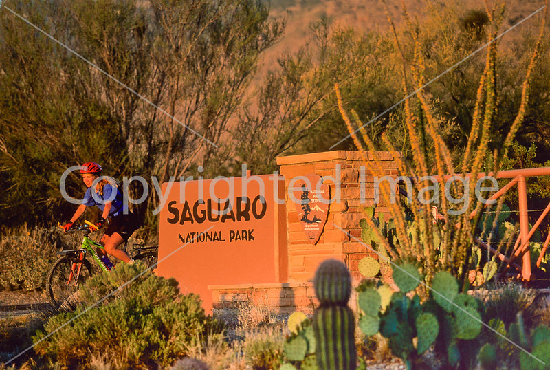 Cyclist entering Saguaro Nat  Park in Arizona - 35 - 72 ppi