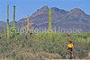 Ajo Mt  Drve, Diablo Mts , in Organ Pipe Cactus Nat'l Monument,  AZ - 53 - 72 ppi