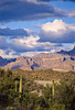 Ajo Mt  Drve, Diablo Mts , in Organ Pipe Cactus Nat'l Monument,  AZ - 17 - 72 ppi