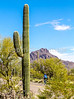 Sojourn cyclists in Tucson Mountain Park - D3 - C3-0366 - 72 ppi
