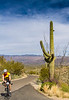 Sojourn cyclists in Saguaro NP East - D2-C3-0147 - 72 ppi