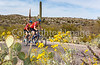 Sojourn cyclists in Saguaro NP East - D2-C2-0037 - 72 ppi