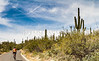 Sojourn cyclists in Saguaro NP East - D2-C3-0150 - 72 ppi