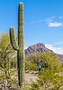 Sojourn cyclists in Tucson Mountain Park - D3 - C3-0371 - 72 ppi