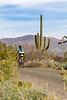 Sojourn cyclists in Saguaro NP East - D2-C3-0125 - 72 ppi
