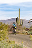 Sojourn cyclists in Saguaro NP East - D2-C3-0122 - 72 ppi