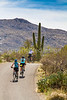 Sojourn cyclists in Saguaro NP East - D2-C3-0131 - 72 ppi