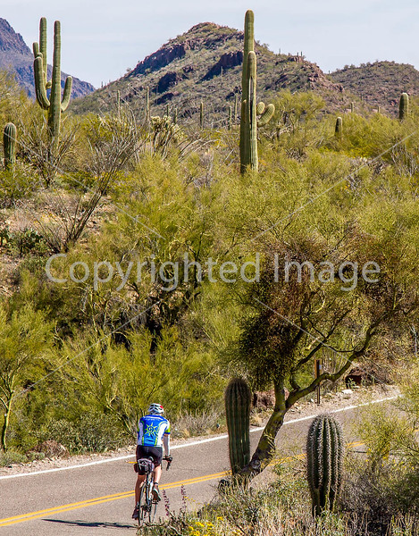 Sojourn cyclists in Tucson Mountain Park - D3 - C3- - 72 ppi-6