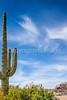 Sojourn cyclists in Saguaro NP East - D2-C2-0060 - 72 ppi