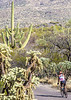 Cyclist(s) in Saguaro Nat'l Park, Arizona - 3-15 - C2 -0019 - 72 ppi-2